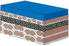 Офсетное резинотканевое полотно Accura